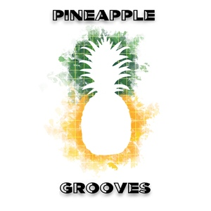 welcome to Pineapple Grooves